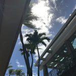 初めてのANA便でハワイへ!